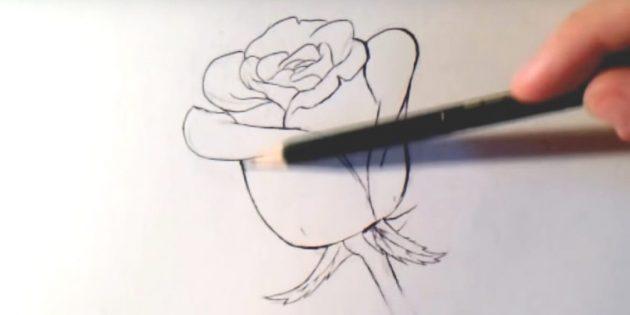 Обведите контуры цветка, стебля и листьев