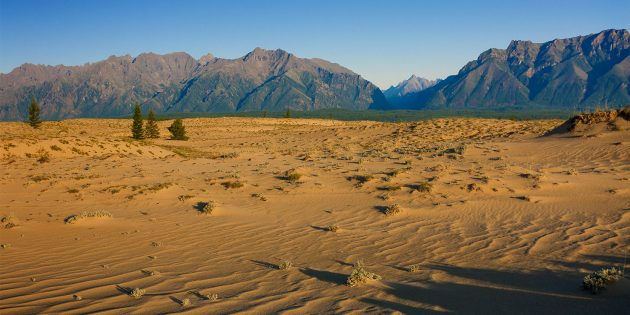 Что посмотреть в России: Чарские пески (Забайкальский край)