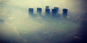 Учёные доказали: дышать в городе с загрязнённым воздухом — всё равно что курить