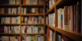 7 книг, которые хотелось бы снова прочитать впервые. Выбор читателей Лайфхакера