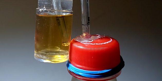 Рецепт яблочного сидра: изготовить гидрозатвор можно самостоятельно