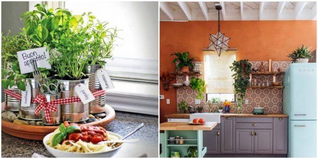Интерьер кухни: озелените комнату