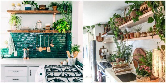 Интерьер на кухне: озелените комнату