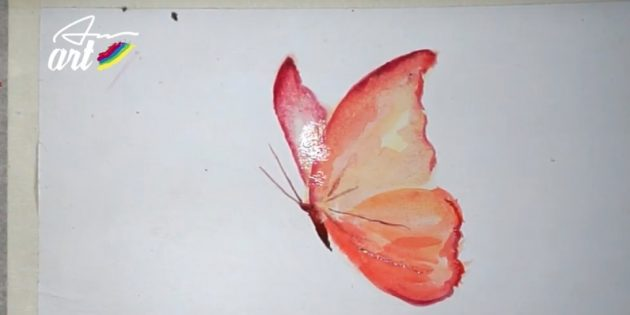 Как нарисовать реалистичную бабочку красками