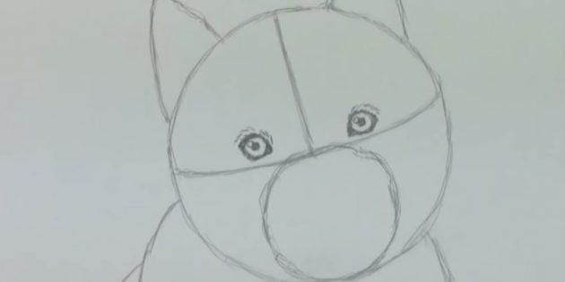 Наметьте глаза собаки