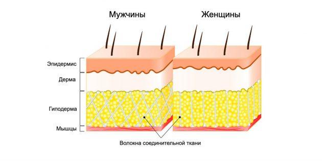 Что такое целлюлит и как от него избавиться