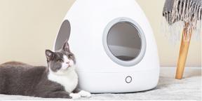 Xiaomi анонсировала умный кошачий дом Moestar. Он похож на космический корабль