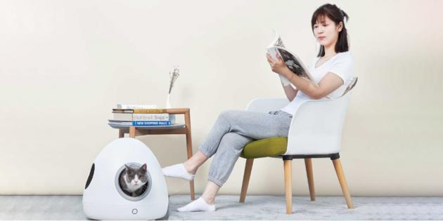 Xiaomi анонсировала умный кошачий дом Moestar