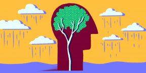 3 простых совета, которые помогут сохранить мозг молодым и здоровым
