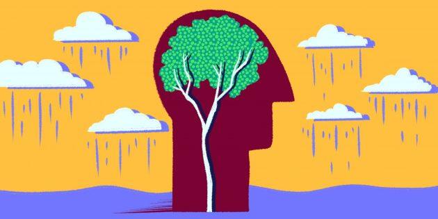 3простых совета, которые помогут сохранить мозг молодым и здоровым