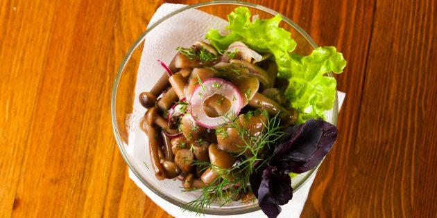 Рецепт маринованных опят с укропом и листьями смородины
