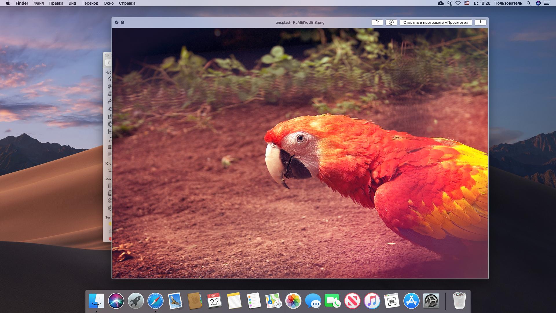 Предпросмотр файлов на Mac