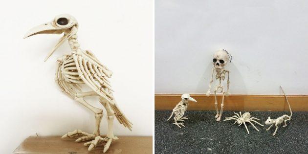 Скелет ворона