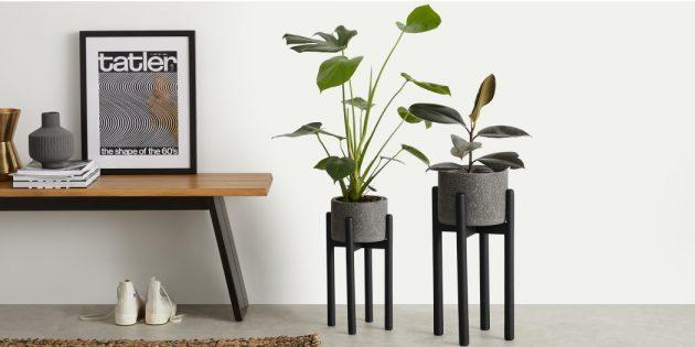 Скандинавский стиль в интерьере: живые растения