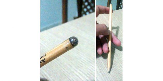 карандаш с семенами