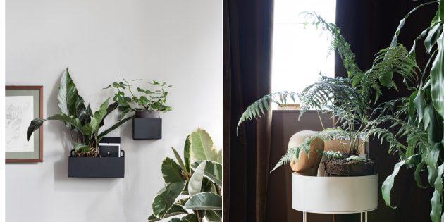 Интерьер гостиной: озелените помещение