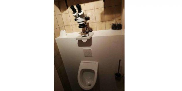 микроскоп в туалете