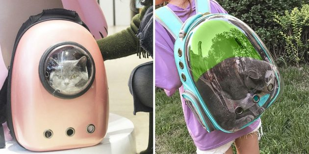 Что подарить маме на день рождения: рюкзак с иллюминатором для переноски кота
