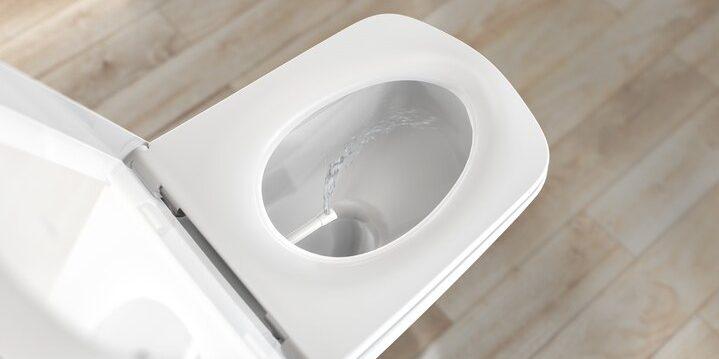 Современные туалеты: унитаз-биде от TECE