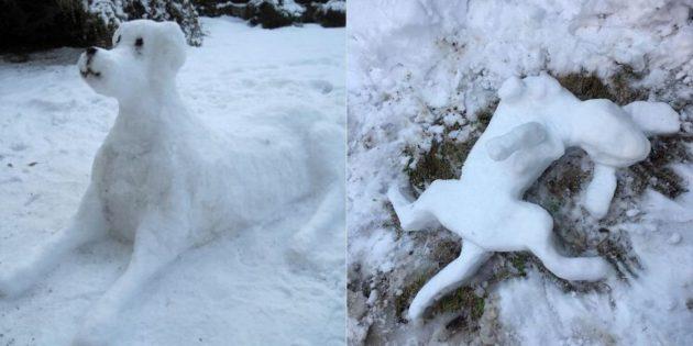 собака из снега