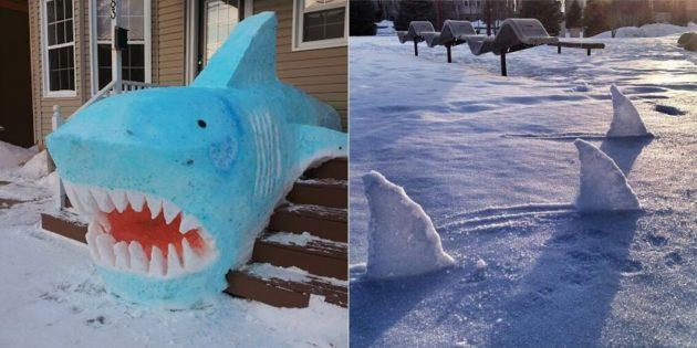 Акула из снега