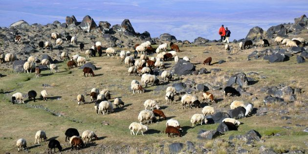 Поездка в Армению: как и где отдыхать на природе