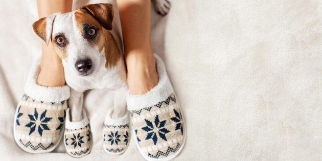 Идеи подарков на Новый год: тёплые тапочки