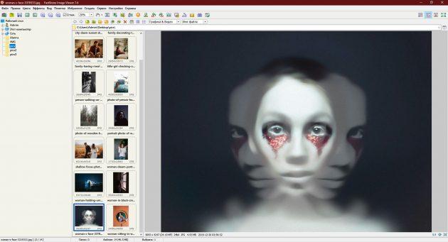 Программы для просмотра фотографий: FastStone Image Viewer