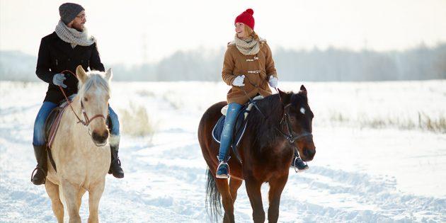 Зимние развлечения: конная прогулка