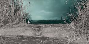 Как создавались спецэффекты для «Ведьмака» от Netflix