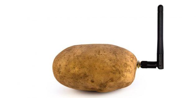 CES 2020: умная картошка Smart Potato