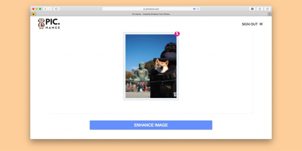 Нейросеть Pic.Hance увеличивает картинки без потери качества
