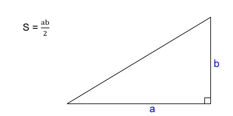 Как найти площадь прямоугольного треугольника