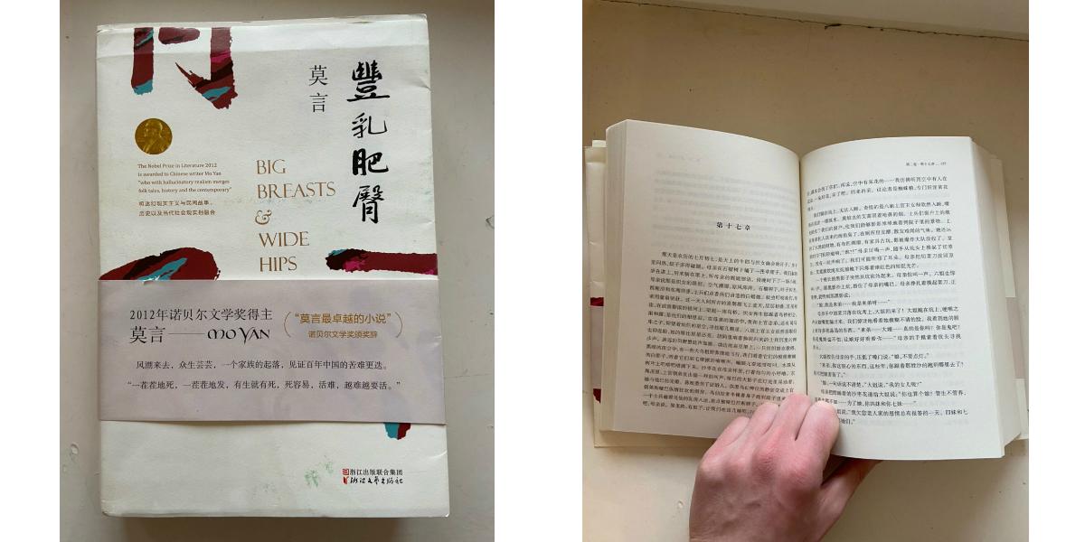 Интересные находки в квартирах: книга на китайском