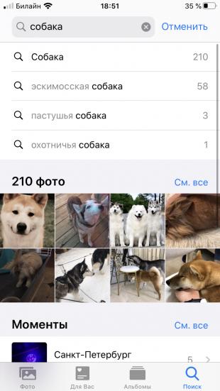 5 скрытых функций приложения «Фото» в iPhone