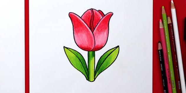 Как нарисовать один простой тюльпан