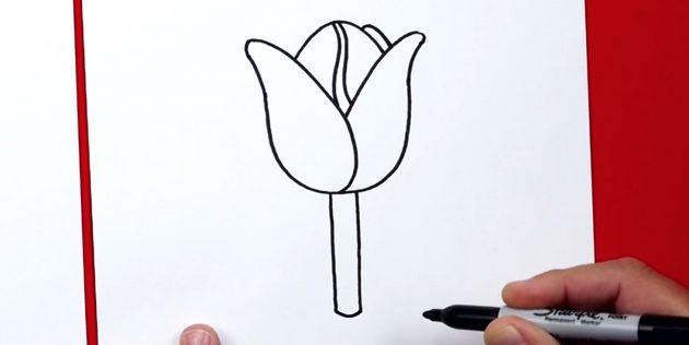 Как нарисовать тюльпан: добавьте стебель