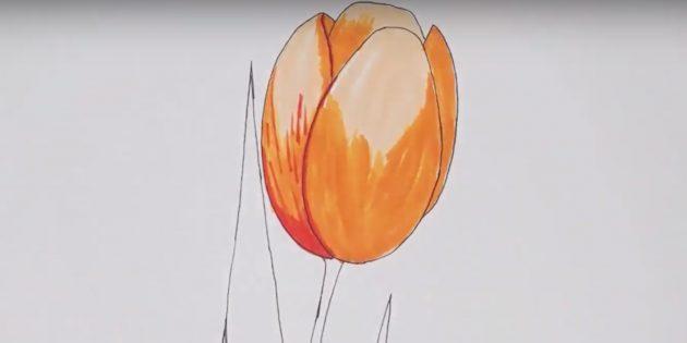 Добавьте красный цвет в левой части цветка