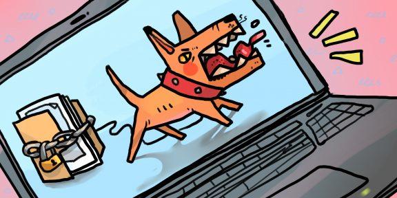 Что могут украсть кибермошенники и как от них защититься