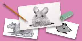 15 способов нарисовать мультяшную и реалистичную мышку