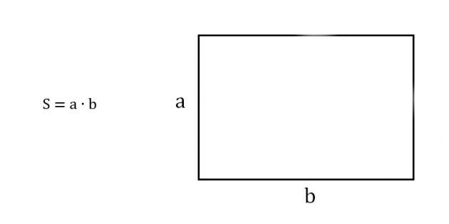 Как найти площадь прямоугольника, зная две соседние стороны
