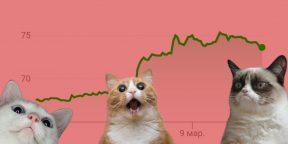 «Вставай, мы там всё уронили»: как в Сети отреагировали на обвал курса рубля