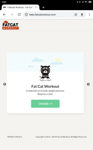 Fat Cat Workout
