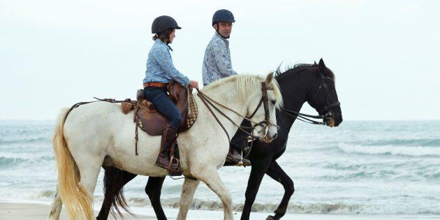 Что подарить на 8Марта: конная прогулка