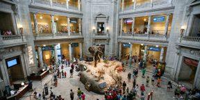 Как посетить лучшие музеи и театры мира не выходя из дома