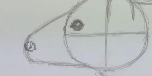 Оформите глаз и нос