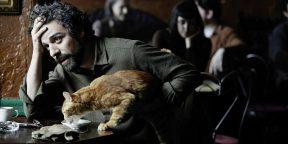 10 замечательных фильмов про кошек
