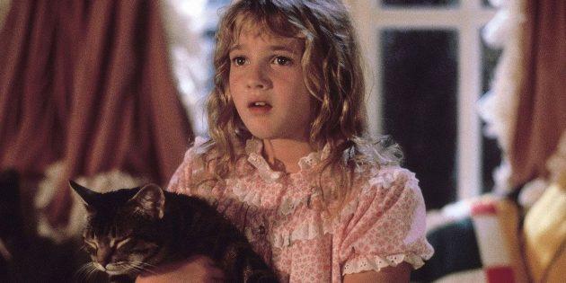 Фильмы про котов: «Кошачий глаз»