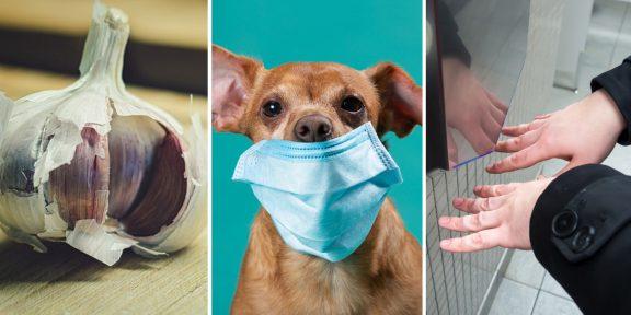 ВОЗ развеяла главные мифы и слухи о коронавирусе. Вот чему верить не стоит