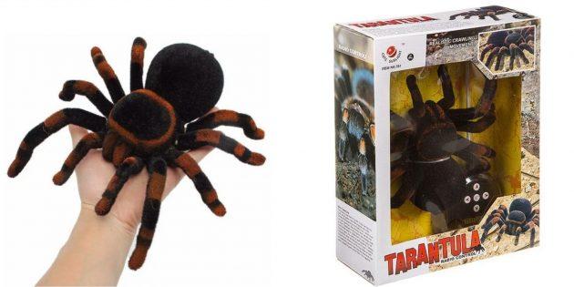 Ползающий тарантул